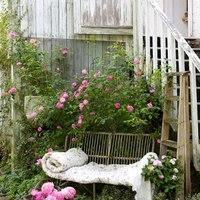 kertben aludni