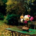 még nyílnak virágok