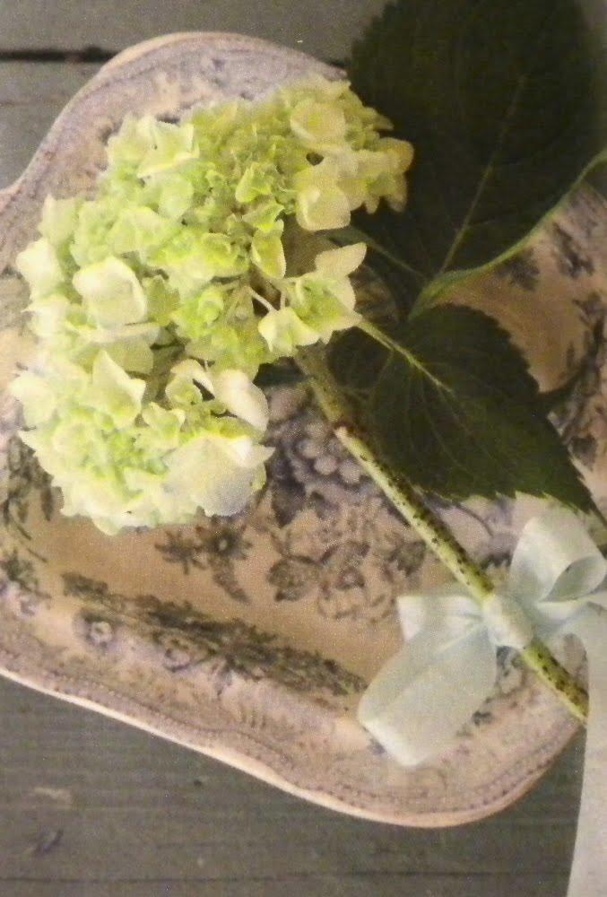 Green hydrangea on blue and white platter.jpg