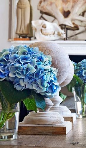 Traditional-Home-Hydrangea-Vignette.jpg