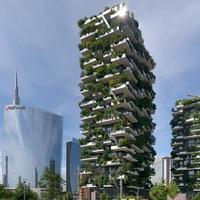 Kulipintyó: Égig érő erdő Milánóban