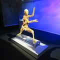 A BODY Kiállítás Budapesten