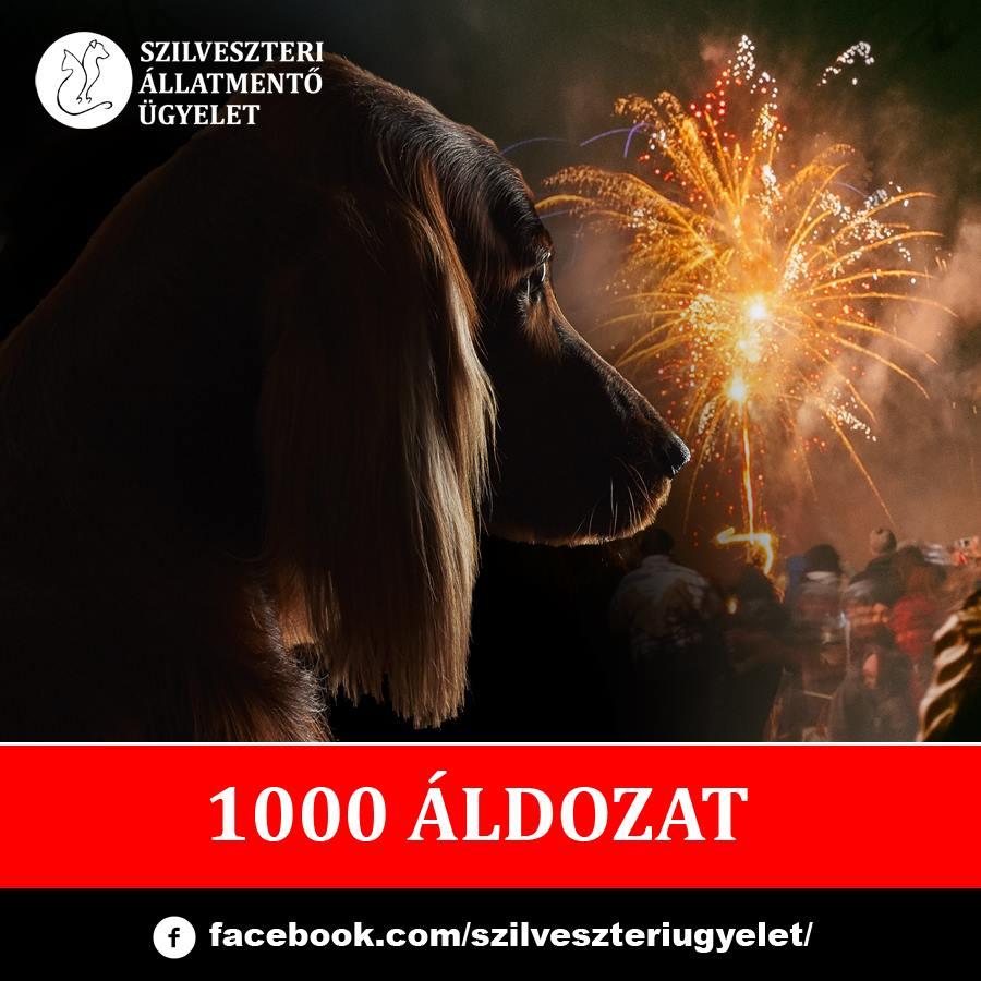 1000_aldozat.jpg