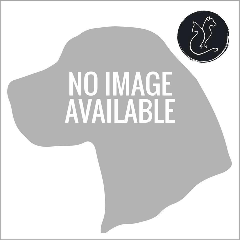2018.12.31 19:00 Budapest 16. ker m0 feletti felüljáró, csömör felé, budapesti úton vérző, haldokló kutya fekszik. a gazdi pár perc múlva odaért, addigra a kutya meghalt. Gazdi elvitte. – itt: Budapest