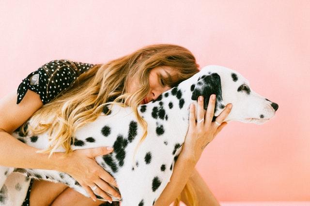 woman-hugging-adult-dalmatian-1766479.jpg