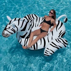 zebra_nyaralas.jpg
