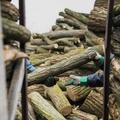 Az önkormányzatokra bízták, lutri volt, ki mennyi fát kapott a téli rezsicsökkentésben