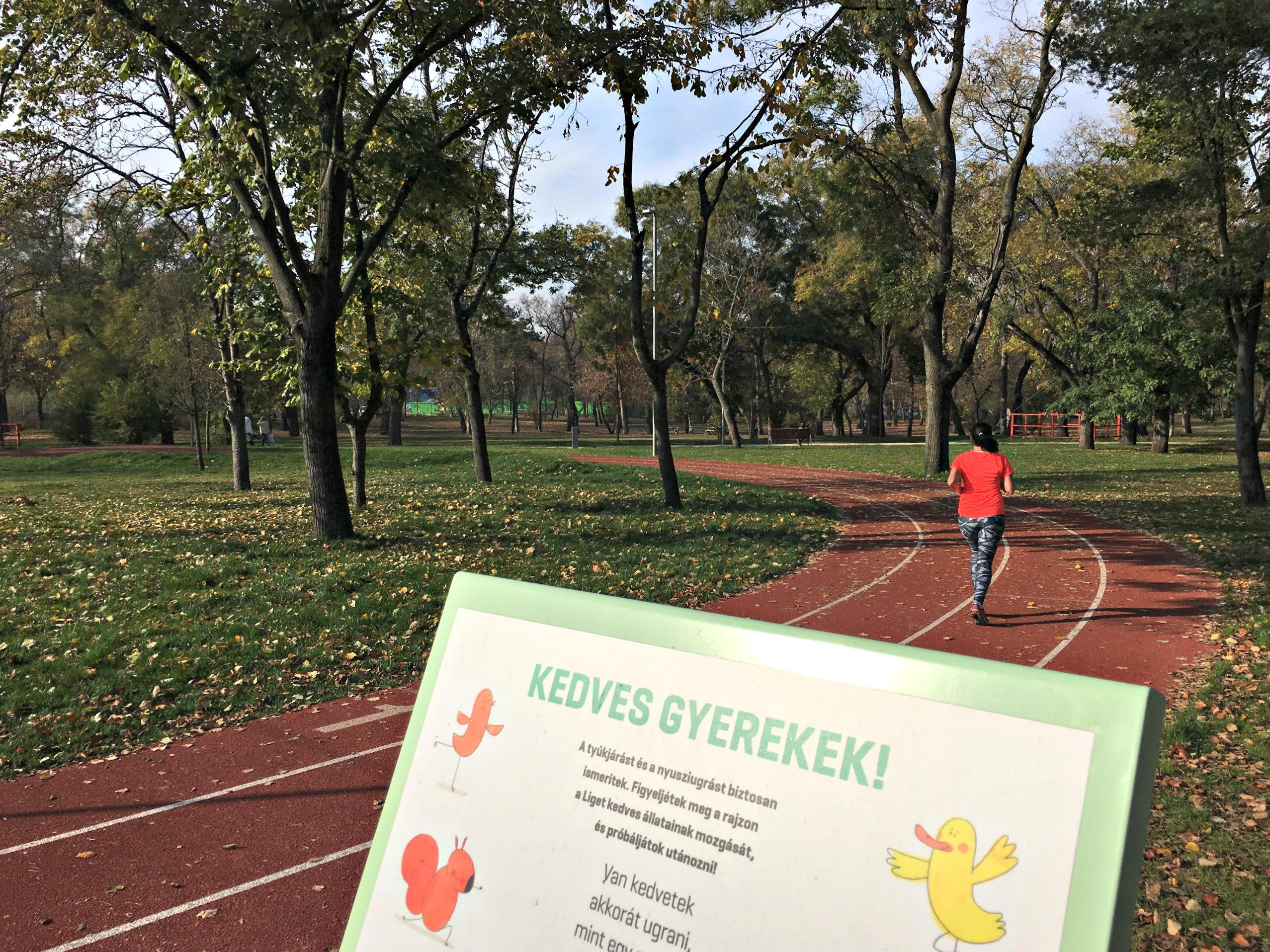 Sportpályával kapcsolatos első észrevételünk, hogy vajon iskoláscsoportokon túl hasznos-e bárkinek egy ilyen kicsi futókör.