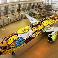 A brazil foci válogatott repülője