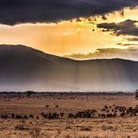 Utazás Kenyába - 1. rész: A készülődés
