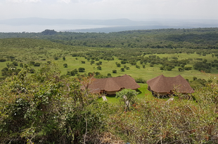Utazás Kenyába 4. rész - A tavak és az Adamson kúria