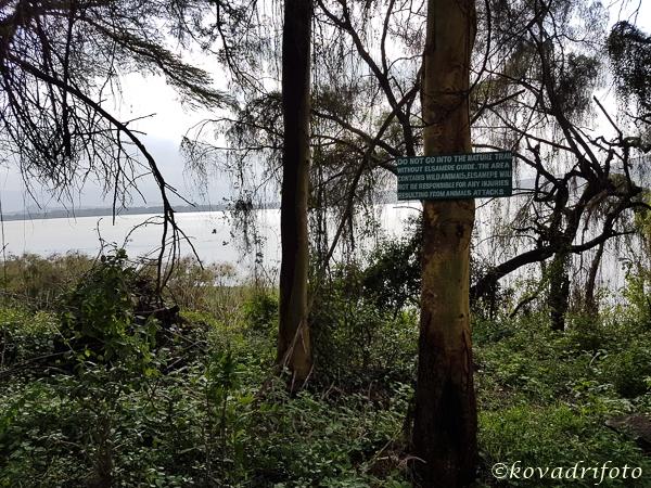 lake_naivasha-15.jpg