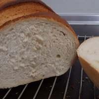 Egyszerű fehér kenyér kezdőknek