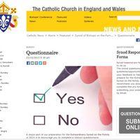 A kérdőívek kitöltésére bíztatja – a laikus híveket is! – a pápa