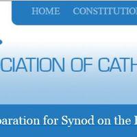 Az ír Katolikus Papok Egyesülete is a vatikáni kérdőív kitöltésére bíztatja a híveket