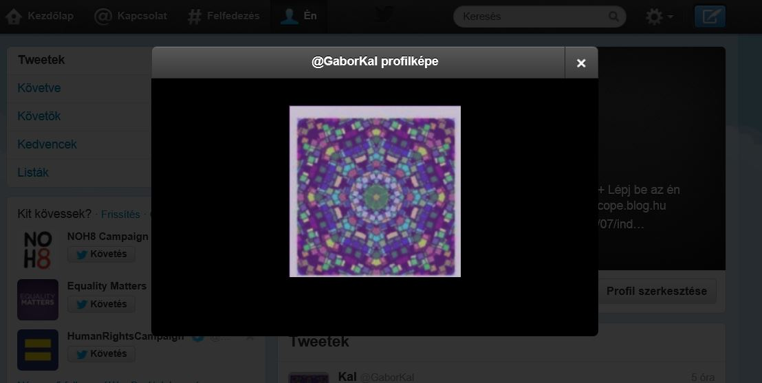 Twitter-SpiritDay.JPG
