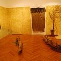 Simon Edina vs. Kertész Kinga:Baglyas erdő installáció