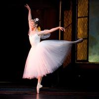 """A romantikus balett I. -  A """"balerina háború"""""""