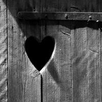 A szív helye - Kalligram 2018/1