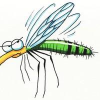 Mutáns szúnyogok