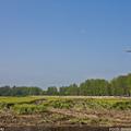 Győrújfalu, helikopteres védekezés