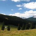 Velika Planina - Kunyhó a réten