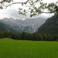 Zöld mező