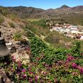 Los Gigantes, Santiago del Teide: Kulináris élvezetek két héten át