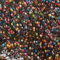 Mi fán terem a hímes tojás?