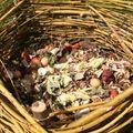 A komposzthalmot nemcsak rakni, bontani is kell