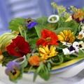 Virágok a kertből a tányérba