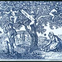 Milyen gyümölcsből főzhetünk pálinkát? - 1. rész