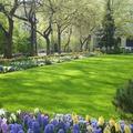 Park Life - A Honvéd téri park