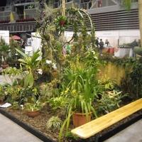 Gardenexpo és orchideakiállítás a SYMA csarnokban