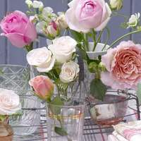 Mit üzennek a virágok?