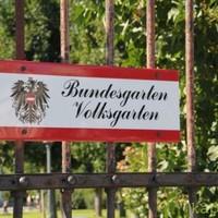 Volksgarten - Bécs