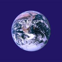 A Föld napja - Szedd a szemetet, ne edd!