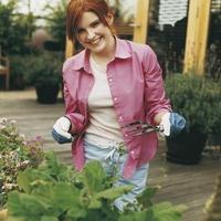 A növények is megjegyezték a hosszú telet - Szezonkezdési tanácsok az OBI-tól (x)