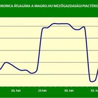Magro - gabonapiaci hírek