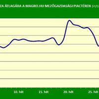 Magro-gabonapiaci körkép - 28. hét