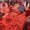 La Tomatina - a legőrültebb spanyol paradicsomfesztivál