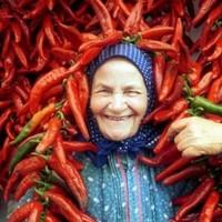Az EU és a kalocsai fűszerpaprika