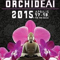 Orchidea Kiállítás – Eredményhirdetés