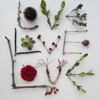 Valentin-nap kertész módra