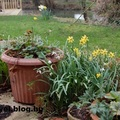 Tavasz Angliában