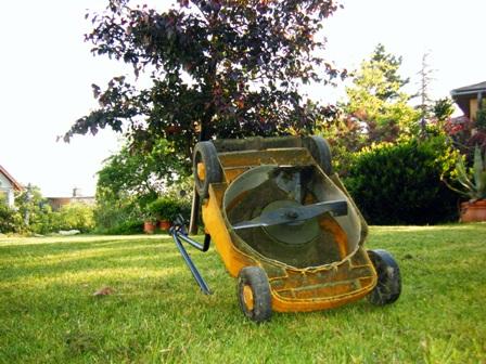 A forró nyarakon a kisebb kertekben jól szolgál az átalakított  öreg fűnyíró is.JPG