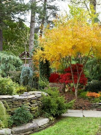 őszi növények.jpg