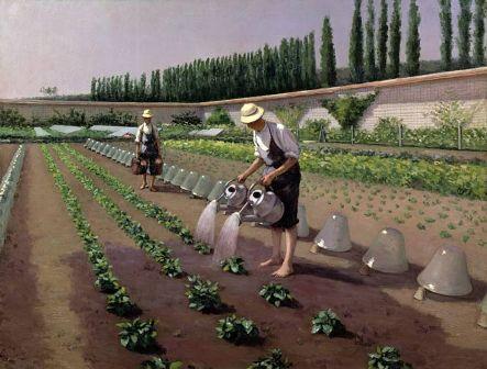 Az újonnan ültetett növényeket folymatosan öntözni kell.JPG