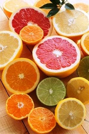 citrus 1.jpg