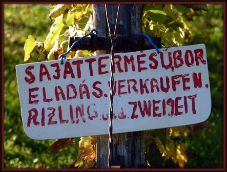030 Egregyi sétára a helyi bor csalogat.JPG